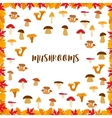 Mushrooms autumn pattern frame made of leaves vector image