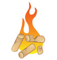 pellet with flames on white background vector image