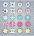 set of white colorful flowers vector image