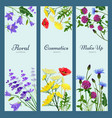 wildflowers banners floral frame with place for vector image
