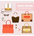 womens fashion collection bags and accessories vector image