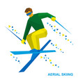 aerial skiing freestyle skier during a jump vector image vector image