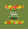 autumn sale banner with leaves for shopping vector image