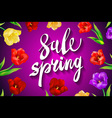Big spring sale Spring beautiful modern vector image