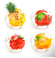collection of fruit in a milk and jiuce splash vector image vector image