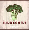 Fresh vegetables sketch background Vintage hand vector image