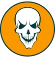 Human white skull vector image vector image