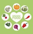 organic food nutrition raw menu vector image vector image