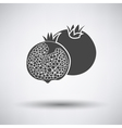 Pomegranate icon on gray background vector image vector image
