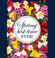 springtime floral greeting flowers poster vector image vector image