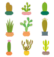 Cactus collection in vector image vector image