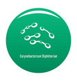 corynebacterium diphtheriae icon green vector image