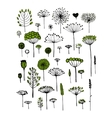 Floral collection sketch fro your design vector image vector image