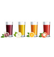 glass glasses with pomegranate apple orange and vector image