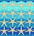 seamless color pattern with starfish vector image