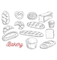 Sketched wheat bread and sweet buns vector image vector image
