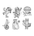 cat set sketch vector image vector image