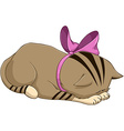 Cute Kitten With Ribbon Bows And Apologises vector image vector image