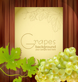 fresh grapes vector image vector image