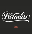 hand drawn lettering paradise elegant modern vector image vector image