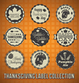Happy Thanksgiving Labels and Icons vector image vector image