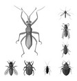 insect and fly symbol set vector image vector image