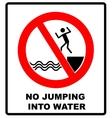 No jumping into water vector image vector image