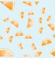 orange slices on light blue background citrus vector image