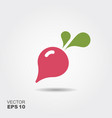 radish flat icon colorful logo vector image vector image