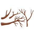 different shapes of branches vector image vector image