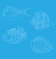 fish 2 vector image vector image