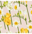 Freesia and daffodil seamless background vector image
