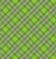 green fabric pattern vector image