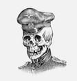 human skull sailor or seaman nautical captain vector image