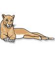 mountain lion logo mascot vector image vector image