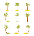 set of colored palms in a flat style vector image