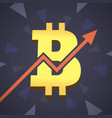 bitcoin grow up big golden bitcoin vector image vector image