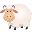Cartoon baby sheep vector image