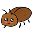 cute beetle on white background vector image vector image