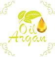 oil drop argan cosmetic falling from leef vector image
