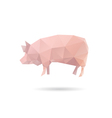 Pig isolated on a white background vector image vector image