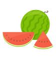 watermelon cartoon vector image vector image