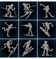 Winter Sport Icons Set vector image