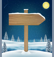 wood board sigh on night christmas winter lake vector image vector image
