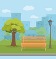 bench empty in urban park concept vector image