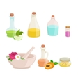 Bottles with organic essential aroma oil and soap vector image vector image