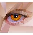 color eye design Hi-tech concept vector image