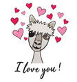 cute alpaca blinking eye vector image vector image
