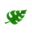 flat icon of big bright green leaf natural vector image