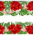 floral border seamless background horizontal vector image vector image